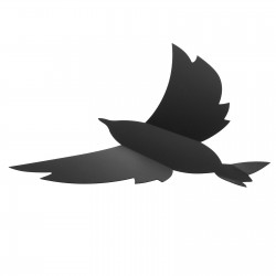 Tablica 3D na ścianę ptak